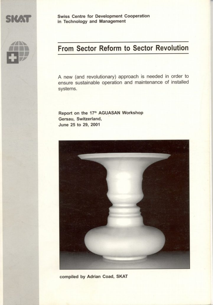 Book Cover: From Sector Reform to Sector Revolution