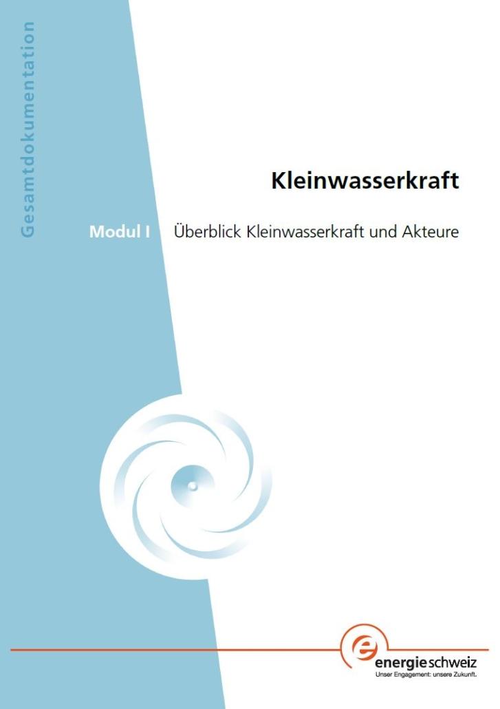 Book Cover: Modul 1: Überblick Kleinwasserkraft und Akteure