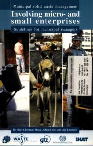 Book Cover: Involving micro- and small enterprises